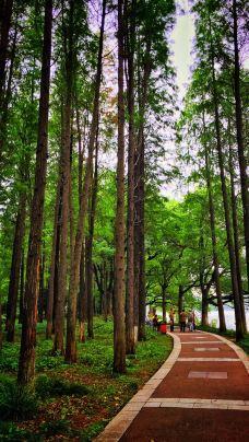 雨山湖-马鞍山-leelee805