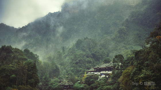 """Mount Qingcheng (""""Green City"""") Scenic Area Ticket"""