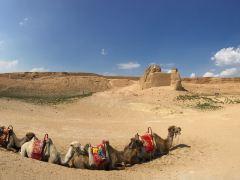 宁夏水洞沟旅游区+青铜峡黄河大峡谷+青铜峡108塔一日游