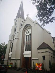 圣彼得大教堂-万隆-生物碱