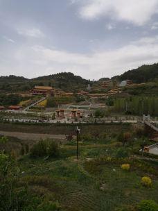 无量山景区-黄龙-M57****344