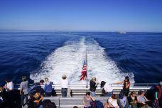 Boston Harbor Cruise坐船体验-波士顿-纽约漫时光