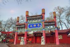 红山公园大佛寺-乌鲁木齐-doris圈圈