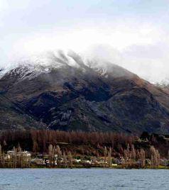 Lake Hawea游记图文-在路上(十四)那妖娆的树