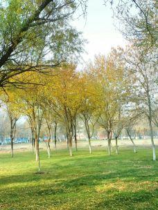 伊宁城市海景公园-伊宁市-流浪看世界