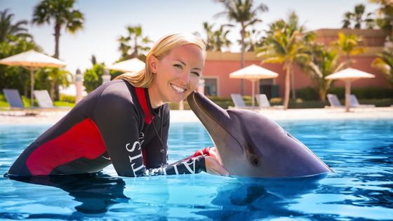 Dolphin Encounter & Atlantis Aquaventure Water Park Ticket