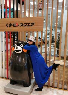 熊本熊部长办公室-熊本-桂林仙儿