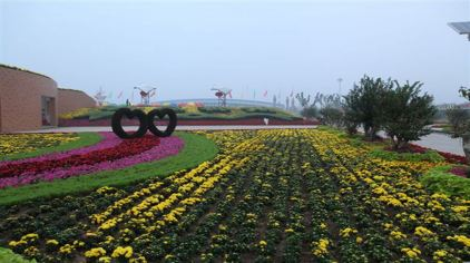鄢陵花博园 (3)