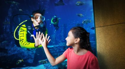 亚特兰蒂斯失落的空间水族馆 the lost chambers aquarium (6)