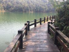 梅子湖公园-普洱-快乐健康老头