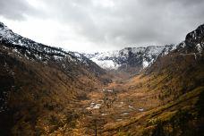 高黎贡山自然保护区-怒江