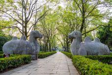 明孝陵-南京-doris圈圈
