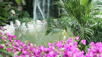 温泉汤池3