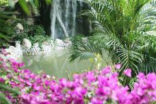 阿尔卡迪亚温泉-聊城-傻桃子呦西