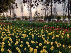 白河湿地公园-新野-M22****3514
