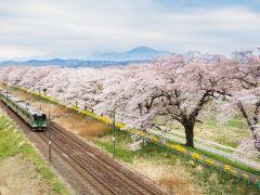 初次打卡必体验,日本全景7日游