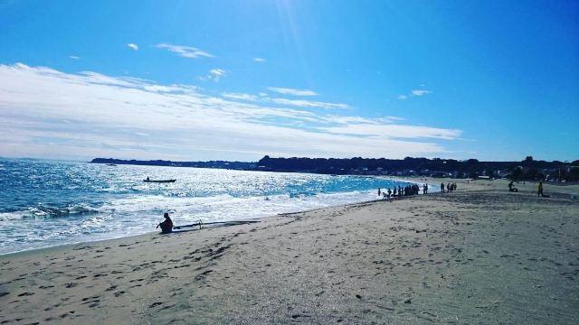 浴場 三浦 海岸 海水