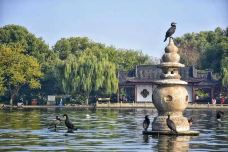 西湖-杭州