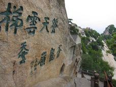 华山-風中遊子