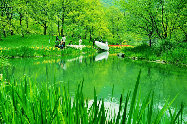 烟花三月游杭州:跟随山野君一起玩转杭州