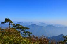 三清山DSC_0302-三清山风景区-三清山-谢辉