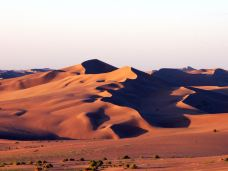 巴丹吉林沙漠-阿拉善右旗-霸气花花帝