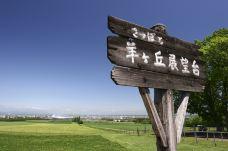 羊之丘展望台-札幌-doris圈圈