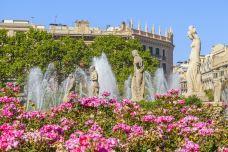 加泰罗尼亚广场-巴塞罗那-doris圈圈