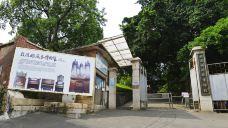 风琴博物馆
