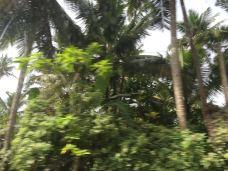 乌纳瓦吐纳海滩-加勒-158****6010