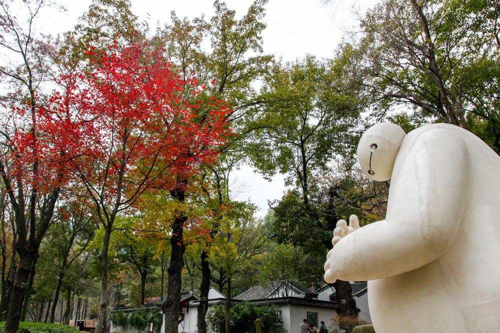 中国四大红枫地之一:苏州天平山摄影一日游(美图100) - 游记攻略【携程攻略】