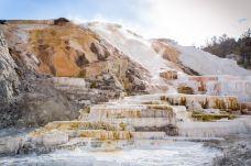 猛犸温泉-黄石国家公园-doris圈圈