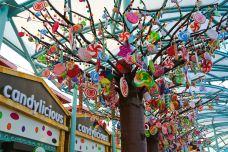 Candylicious糖果店-新加坡-Doctor_Garfield
