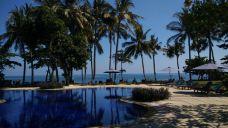 罗威纳海滩-巴厘岛-洄游