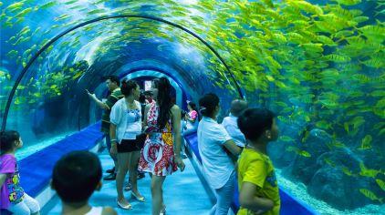 罗源湾海洋世界-场景5