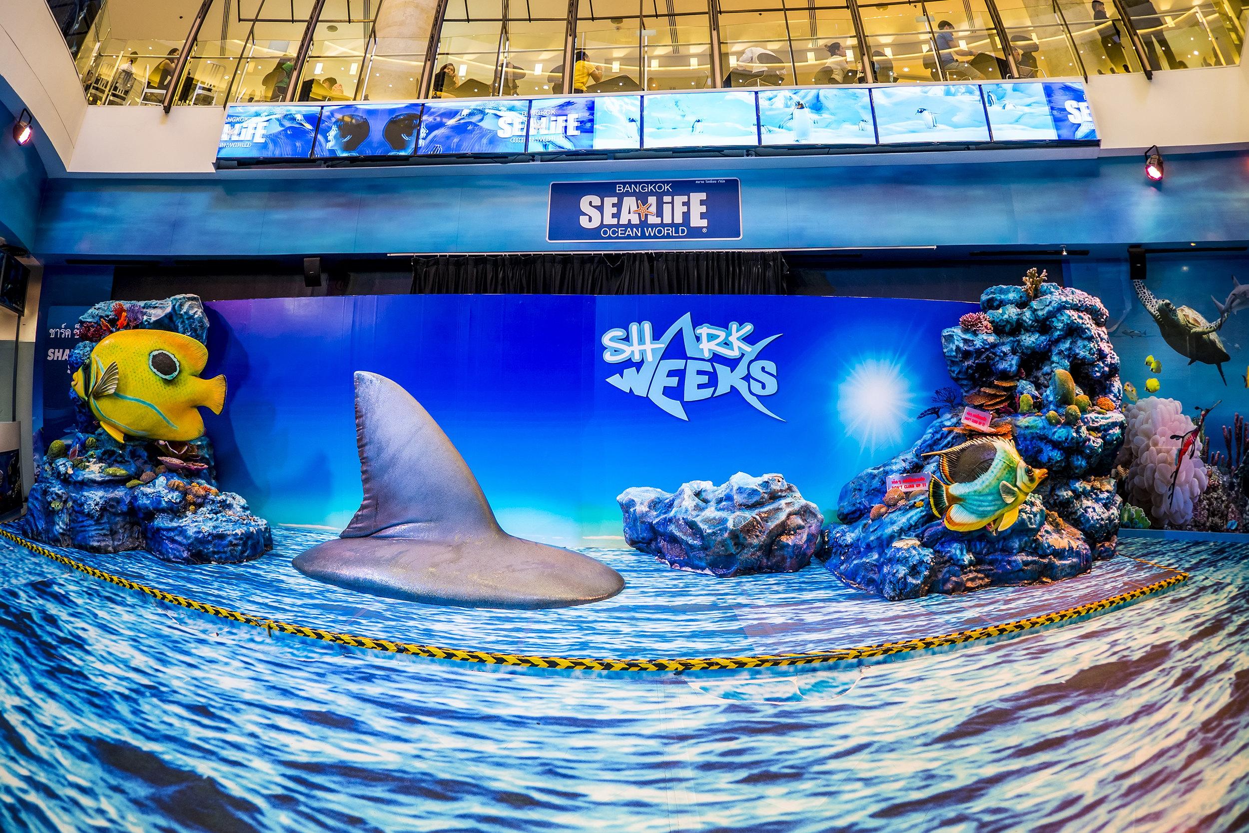 曼谷暹羅海洋世界  Sea Life Bangkok Ocean World   -0