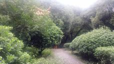 龙山公园-上虞区-M25****992