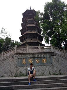 乌塔-福州-慵懒国王