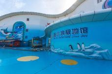 哈尔滨极地公园·海洋馆-哈尔滨-doris圈圈