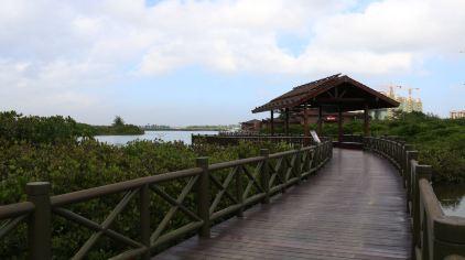 富力红树湾52