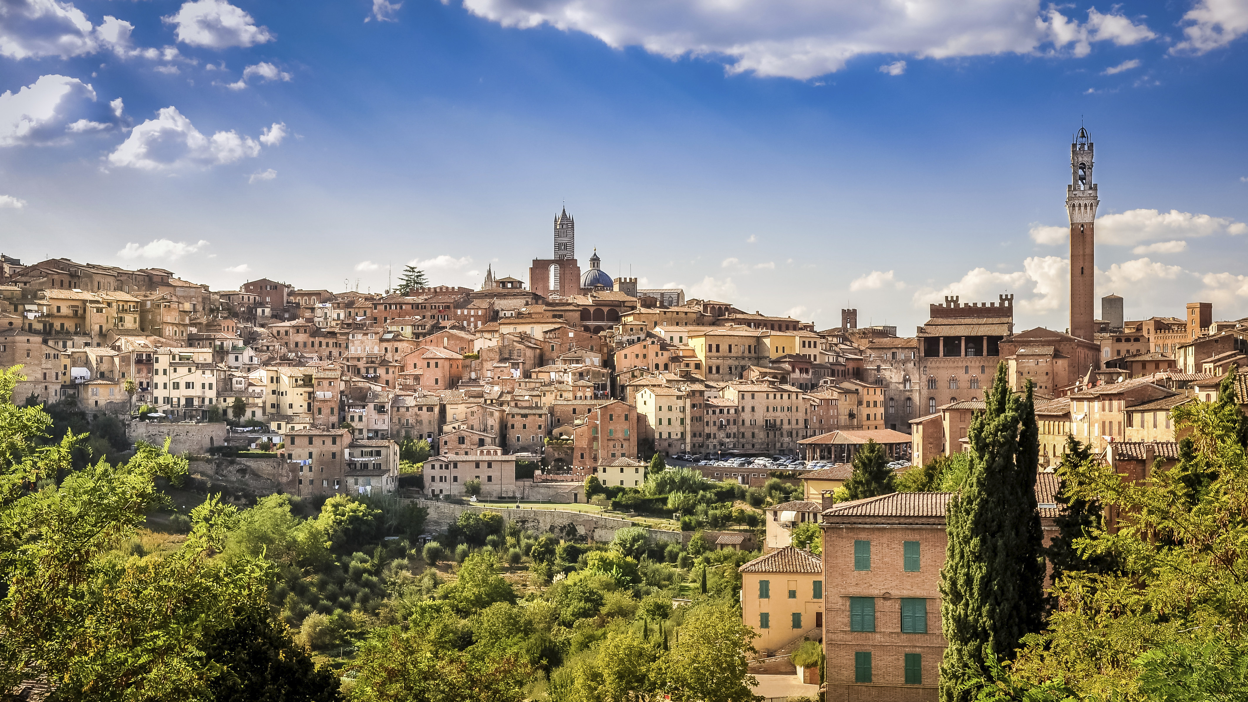 Pisa, Siena, and San Gimignano Day Tour from Florence