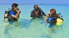 薇拉瓦鲁岛潜水体验