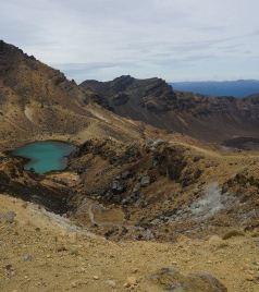 汤加游记图文-我们只爱走走看看 新西兰北岛 从火山逛到Tiritiri那个值得鸟儿爱的地方 顺便滚个泥塘挖点蛤