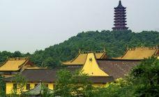 杭州东方文化园-萧山区-盲龟_浮木