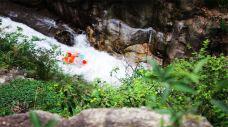 白云峰峡谷漂流-宜春-赖宝小乖
