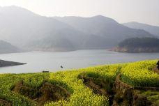 湖山森林公园-遂昌-137****4573