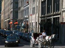 蒙特利尔蒙特利尔旧城区图片