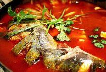 湘西美食图片-酸汤鱼