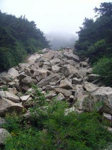 石河-泰山-尊敬的会员