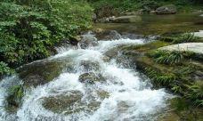 冷水河自然保护区-金沙-后会无期
